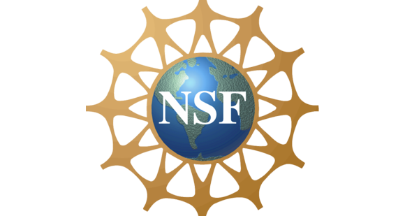Revised NSF grants gov application guide issued - Research