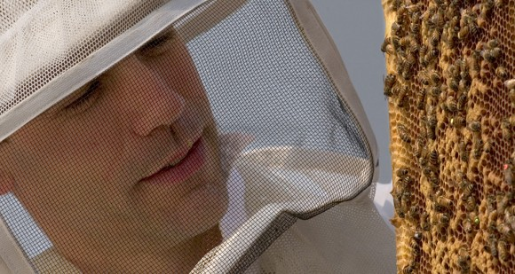 [Photo by Chris English] UNCG Biology professor Olav Rueppell tends to his honey bees.